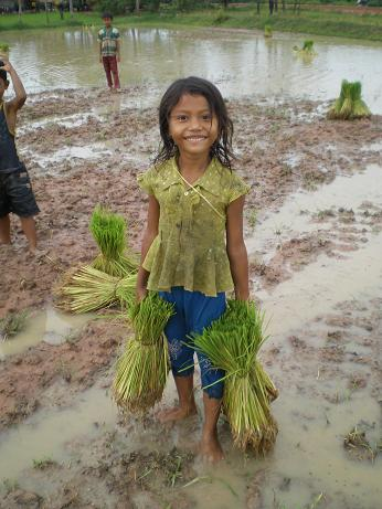 young cambodian girl smiling on flooded grounds holding bundled crops